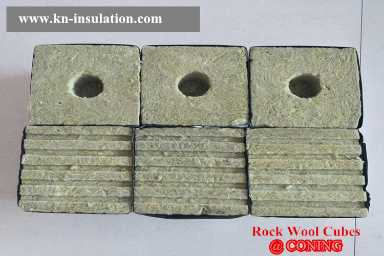 Growing vegetables in Rockwool Cubes 2018